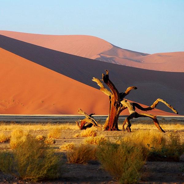 tas-extensions-namibia